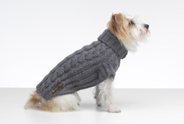 Love-My-Dog-Jumper.jpg