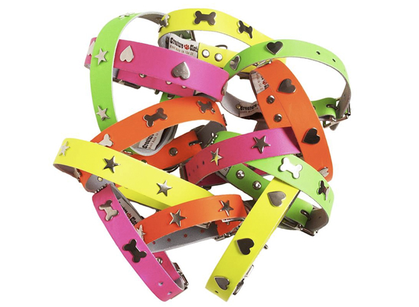 Creature-Clothes-Disco-Dog-Collars-Assorted-Neon.jpg