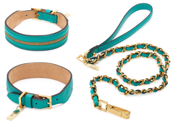 Frida_Firenze_Collar-and-Lead.jpg