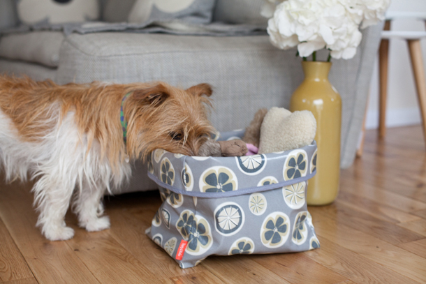 Poppy--Rufus-Toy-Box.jpg